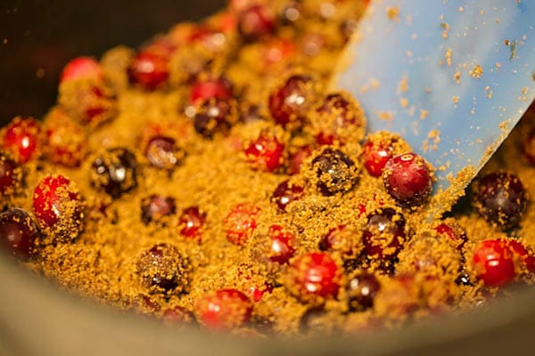 chefv-cranberry-4-mixing-600p